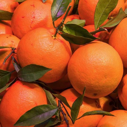 Spain-in-orange